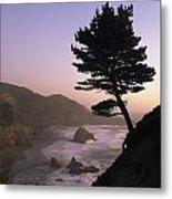 A Scenic View Of The Oregon Coast Metal Print