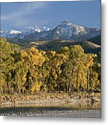 A Scenic View Of The Yellowstone River Metal Print