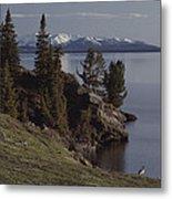 A Scenic View Of Yellowstone Lake Metal Print