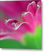 A Simple Thought Metal Print