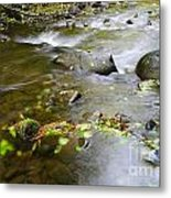 A Small Dam Of Golden Leaves  Metal Print