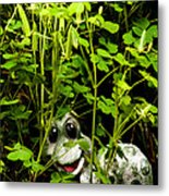 A Smile In A Clover Forest Metal Print