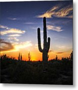 A Sonoran Sunset  Metal Print