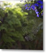 A Spider Web In A Garden Metal Print by Taylor S. Kennedy