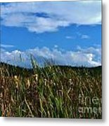 A Storm Rolls In From The West 16 Metal Print