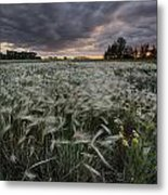 A Summer Sunrise With Storm Clouds Metal Print