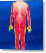 A Thermogram Of A Nude Man Back Metal Print