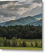 A Touch Of Sunshine Metal Print