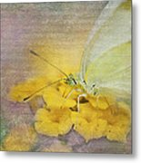 A Touch Of Yellow Metal Print by Betty LaRue
