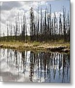 A Tranquil River With A Reflection Metal Print by Susan Dykstra
