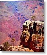 A Tree And The Canyon Metal Print