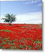 A Tree In A Red Sea Metal Print
