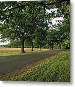 A Tree-lined Rural Virginia Road Metal Print
