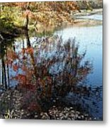 A Trees Reflection And Fallen Leaves  Metal Print
