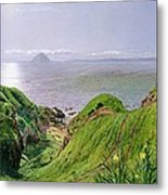 A View Of Ailsa Craig And The Isle Of Arran Metal Print