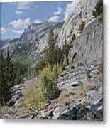 A View Through Goddard Canyon Metal Print