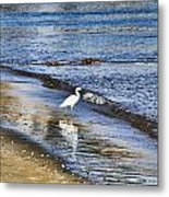 A Visit To The Beach Metal Print