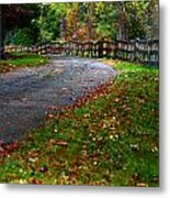 A Walk In An Autumn Afternoon Metal Print