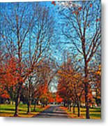 A Walk To Remember  Metal Print