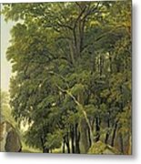 A Wooded Landscape  Metal Print