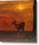 A Young Deer Metal Print