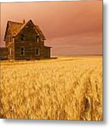 Abandoned Farm House, Wind-blown Durum Metal Print