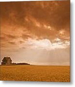 Abandoned Farm In Durum Wheat Field Metal Print