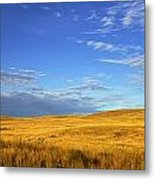 Abandoned House On The Prairies Metal Print