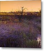 Abandoned Shack At Sunset Near A Creek Metal Print