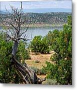 Abiquiu Lake New Mexico 2 Metal Print