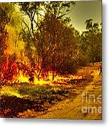 Ablaze Metal Print by Joanne Kocwin