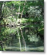 Abrams Reflections Metal Print