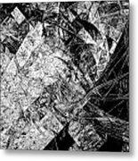 Abs 0575 Metal Print