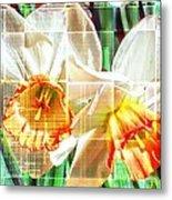 Abstract Daffodils  Metal Print