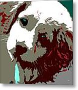 Abstract Pup Metal Print