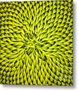 Abstract Sunflower Pattern Metal Print