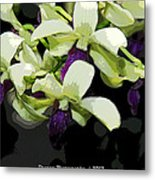Accented Purple Poster Orchid Fx  Metal Print