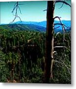 Across The Forested Mountains Metal Print