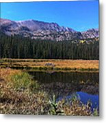 Across The Pond And Over The Mountain Metal Print