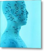 Acupuncture Model Metal Print