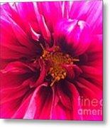 Adorable Flora  Metal Print