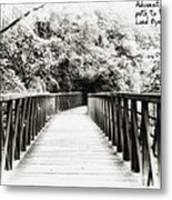 Adversity Is The First Path To Truth Metal Print
