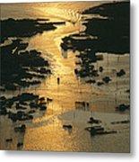 Aerial Shot, Tangier Island, Chesapeake Metal Print