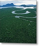 Aerial View Of The Salak River. Mount Metal Print