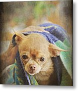 After The Bath Metal Print