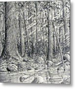 After The Flash Flood Metal Print