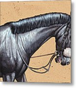 After The Race.  Metal Print