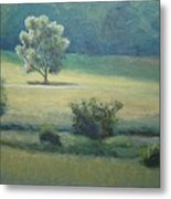 After The Rain Metal Print by Mark Haley