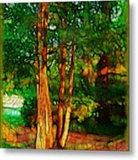 Afternoon Delight Metal Print by Judi Bagwell