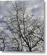 Against The Clouds Metal Print